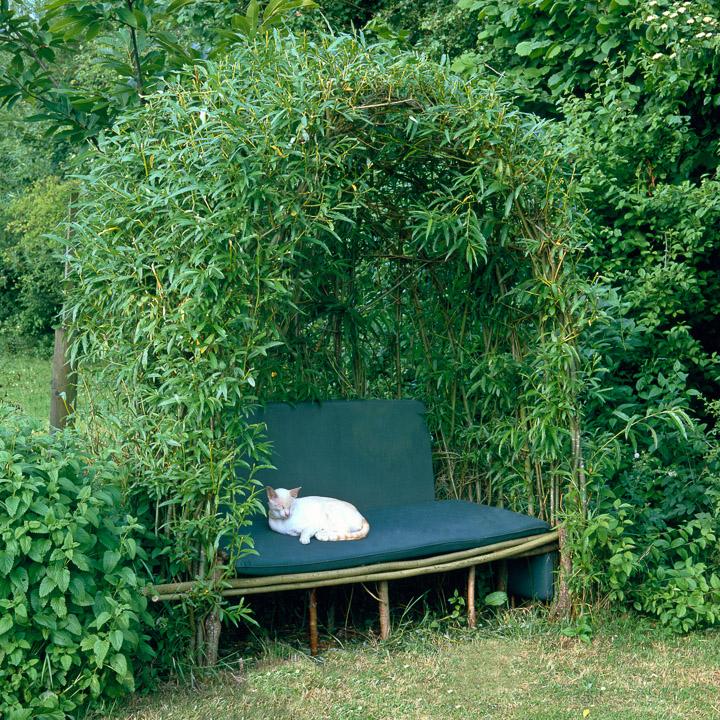 Garden Bench With Arch
