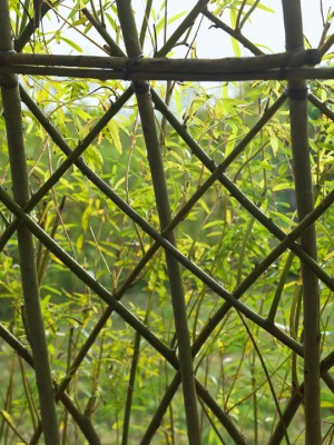 wpid2516-Living-Willow-Structures-GWLL019-nicola-stocken.jpg