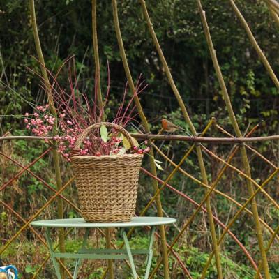 wpid2518-Living-Willow-Structures-GWLL020-nicola-stocken.jpg