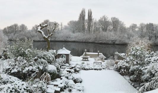 wpid3029-Ockwell-in-Snow-GOCK133-nicola-stocken.jpg