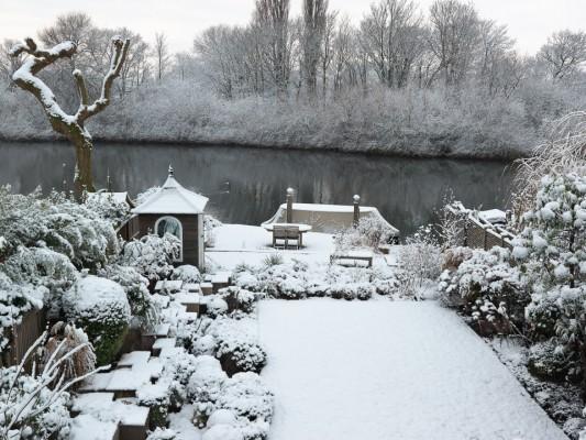 wpid3031-Ockwell-in-Snow-GOCK134-nicola-stocken.jpg