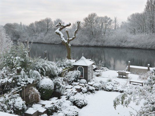 wpid3033-Ockwell-in-Snow-GOCK135-nicola-stocken.jpg