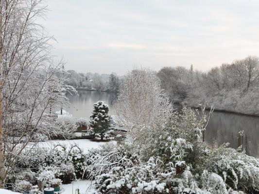 wpid3035-Ockwell-in-Snow-GOCK136-nicola-stocken.jpg
