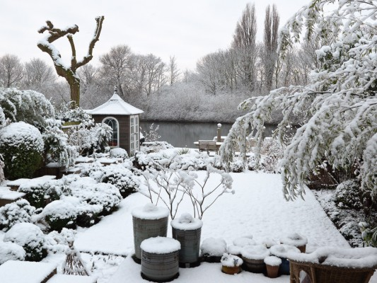 wpid3039-Ockwell-in-Snow-GOCK138-nicola-stocken.jpg