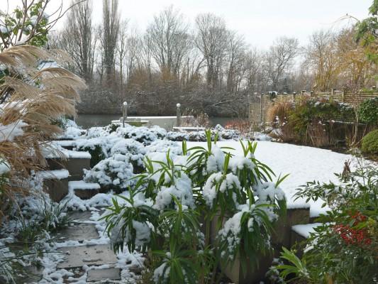 wpid3049-Ockwell-in-Snow-GOCK143-nicola-stocken.jpg
