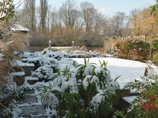 wpid3051-Ockwell-in-Snow-GOCK144-nicola-stocken.jpg