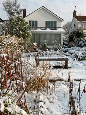 wpid3057-Ockwell-in-Snow-GOCK147-nicola-stocken.jpg