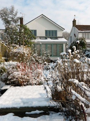 wpid3059-Ockwell-in-Snow-GOCK148-nicola-stocken.jpg