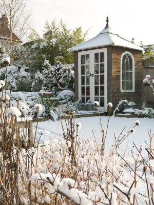 wpid3061-Ockwell-in-Snow-GOCK149-nicola-stocken.jpg