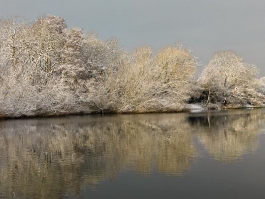 wpid3063-Ockwell-in-Snow-GOCK150-nicola-stocken.jpg