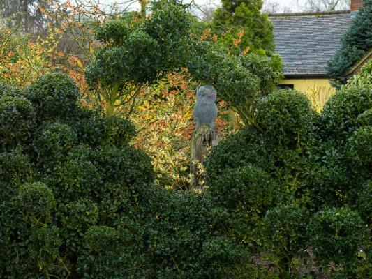 wpid3171-Johns-Garden-GASH063-nicola-stocken.jpg