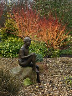 Thumbnail image for John's Garden