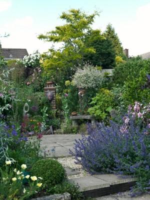 wpid3485-Bens-Acre-Garden-GBEN004-nicola-stocken.jpg