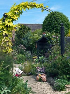 wpid3503-Bens-Acre-Garden-GBEN013-nicola-stocken.jpg