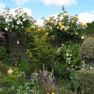 wpid3511-Bens-Acre-Garden-GBEN017-nicola-stocken.jpg