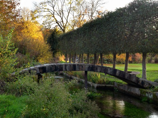 wpid3771-River-Test-Mill-Garden-GBEM007-nicola-stocken.jpg