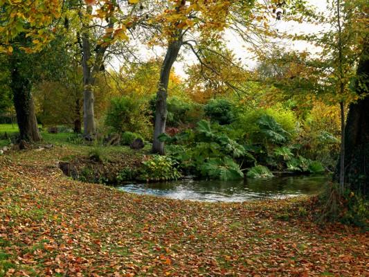 wpid3777-River-Test-Mill-Garden-GBEM010-nicola-stocken.jpg