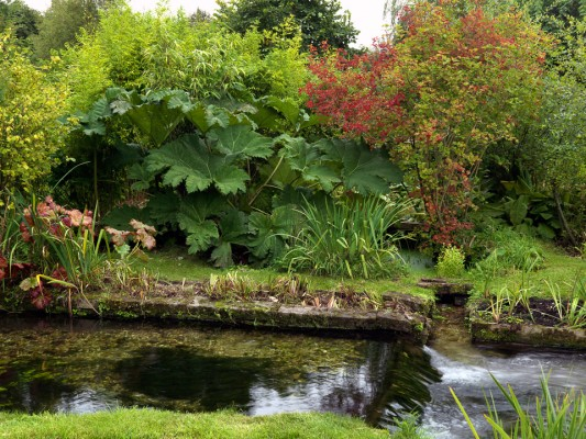 wpid3795-River-Test-Mill-Garden-GBEM019-nicola-stocken.jpg