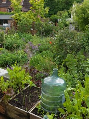 wpid4354-Celebrity-Gardeners-Tips-GALY010-nicola-stocken.jpg