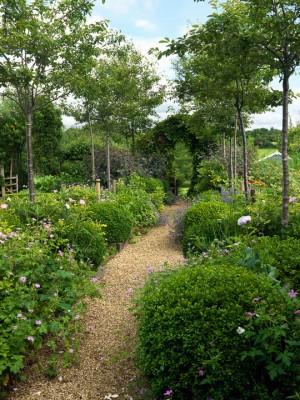 wpid4370-Celebrity-Gardeners-Tips-GKIM104-nicola-stocken.jpg