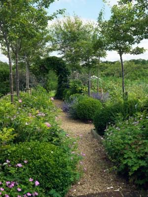 wpid4372-Celebrity-Gardeners-Tips-GKIM105-nicola-stocken.jpg