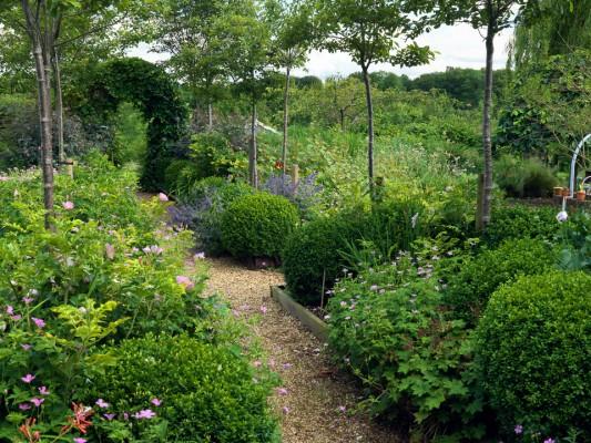 wpid4374-Celebrity-Gardeners-Tips-GKIM106-nicola-stocken.jpg