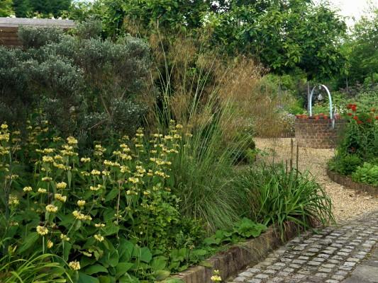 wpid4376-Celebrity-Gardeners-Tips-GKIM110-nicola-stocken.jpg