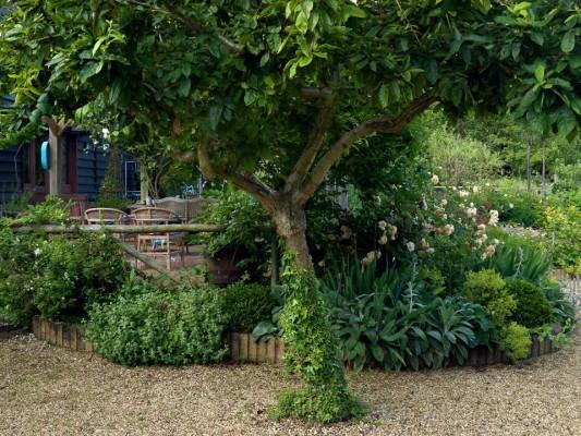wpid4378-Celebrity-Gardeners-Tips-GKIM111-nicola-stocken.jpg