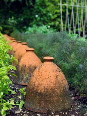 wpid4394-Celebrity-Gardeners-Tips-GRAY031-nicola-stocken.jpg