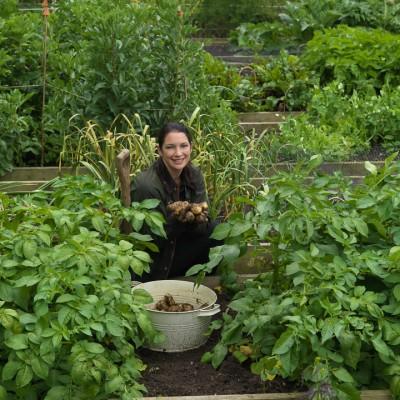 wpid4402-Celebrity-Gardeners-Tips-GRDT024-nicola-stocken.jpg
