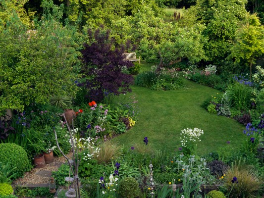 wpid4521-Muswell-Hill-Garden-GDUK037-nicola-stocken.jpg