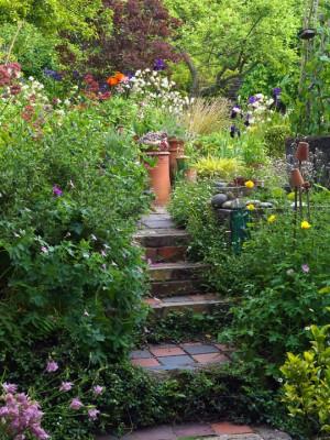 wpid4529-Muswell-Hill-Garden-GDUK044-nicola-stocken.jpg