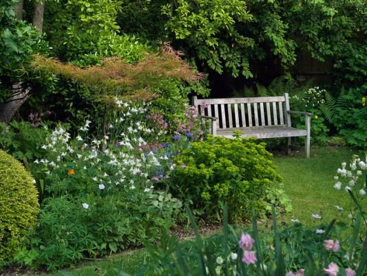 wpid4553-Muswell-Hill-Garden-GDUK065-nicola-stocken.jpg