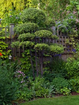 wpid4561-Muswell-Hill-Garden-GDUK069-nicola-stocken.jpg