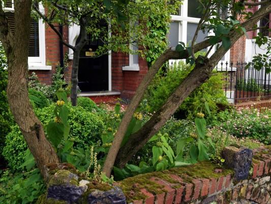 wpid4591-Muswell-Hill-Garden-GDUK071-nicola-stocken.jpg