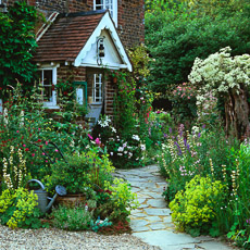 Thumbnail image for Front Garden Design