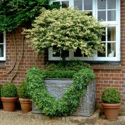 wpid4701-Front-Garden-Design-ACON078-nicola-stocken.jpg