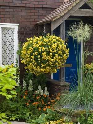 wpid4709-Front-Garden-Design-DESI398-nicola-stocken.jpg