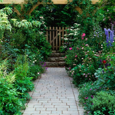 wpid4719-Front-Garden-Design-DFRO027-nicola-stocken.jpg
