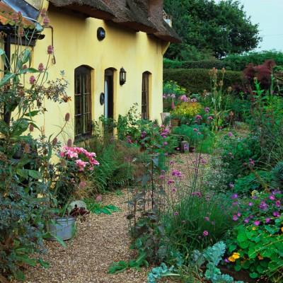 wpid4751-Front-Garden-Design-GHOL017-nicola-stocken.jpg