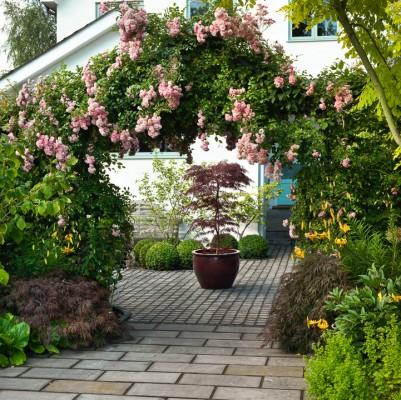 wpid4759-Front-Garden-Design-GOCK119-nicola-stocken.jpg