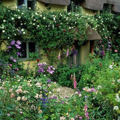 wpid4767-Front-Garden-Design-GROS053-nicola-stocken.jpg