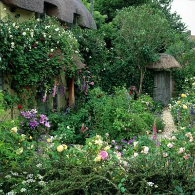 wpid4769-Front-Garden-Design-GROS055-nicola-stocken.jpg