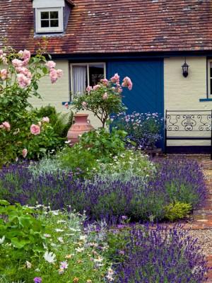 wpid4816-High-Summer-Garden-GGLO090-nicola-stocken.jpg