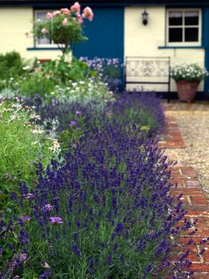 wpid4828-High-Summer-Garden-GGLO096-nicola-stocken.jpg
