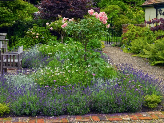 wpid4832-High-Summer-Garden-GGLO098-nicola-stocken.jpg