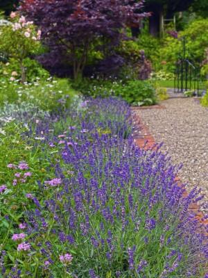 wpid4834-High-Summer-Garden-GGLO099-nicola-stocken.jpg