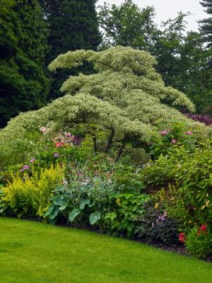 wpid4838-High-Summer-Garden-GGLO101-nicola-stocken.jpg