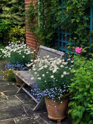wpid4840-High-Summer-Garden-GGLO102-nicola-stocken.jpg
