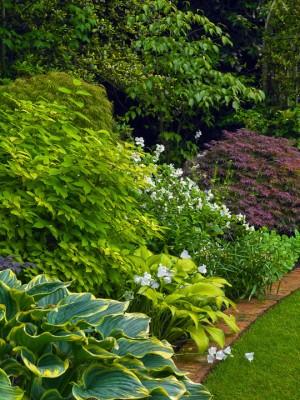 wpid4846-High-Summer-Garden-GGLO105-nicola-stocken.jpg